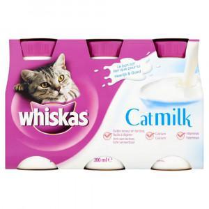 lait pour chaton