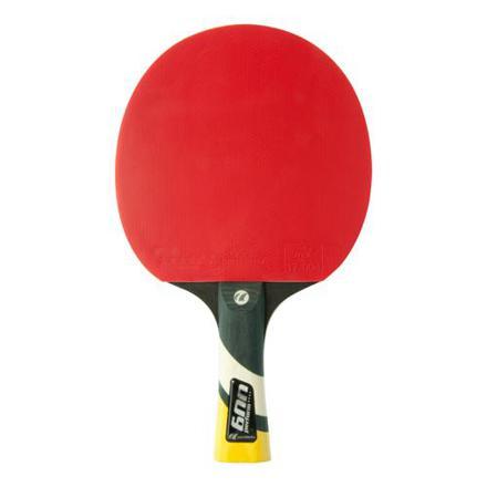 raquette de tennis de table