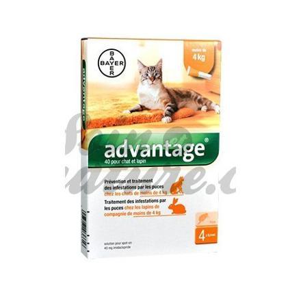 advantage chat