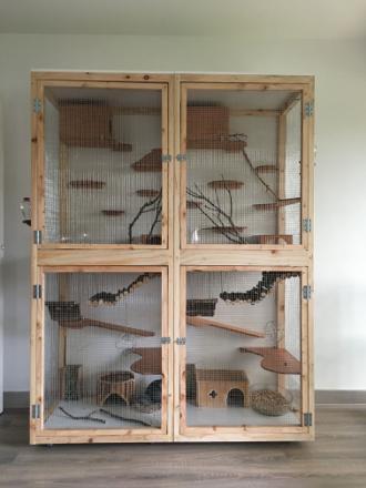 cage pour chinchilla