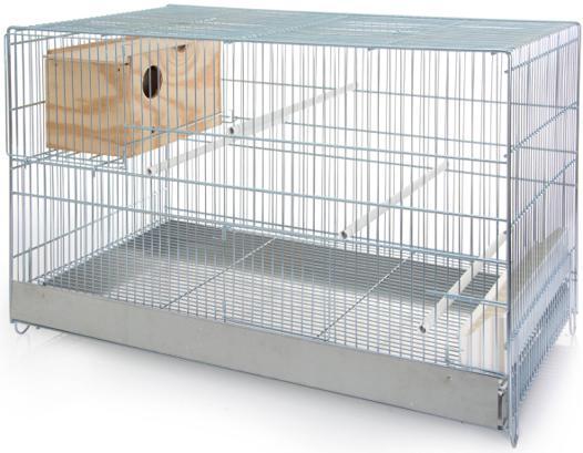 cage pour inseparable
