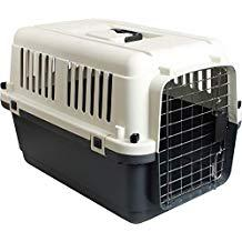 cage transport chien