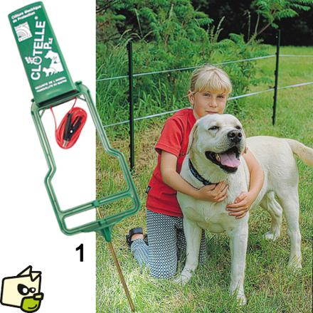 cloture electrique pour chien sans collier