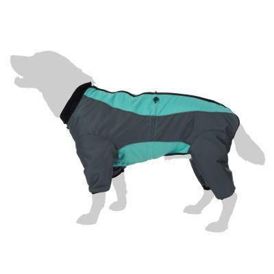 combinaison pour chien
