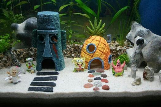 decoration pour aquarium