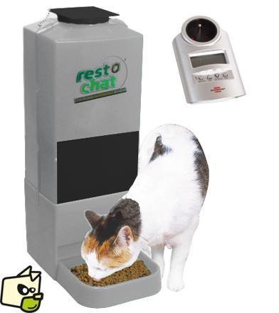 distributeur de croquettes chat