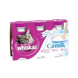 lait chaton