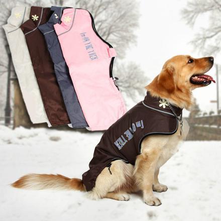 manteau grand chien hiver