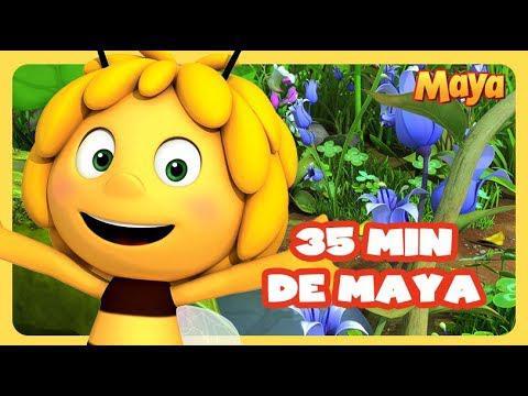 maya l abeille dessin animé