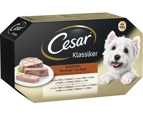 nourriture pour chien cesar