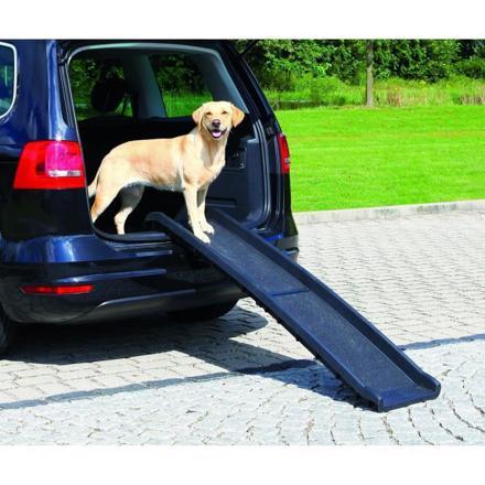 rampe pour chien