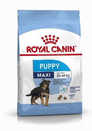royal canin chien