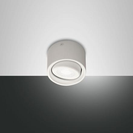 spot orientable