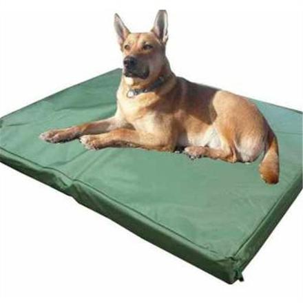 tapis grand chien